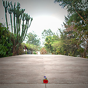 A single red rose of remembrance sits atop one of the mass graves at the Kigali Memorial Centre in downtown Kigali, Rwanda.