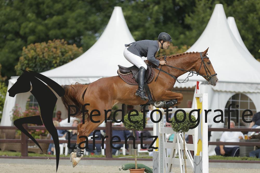 Schneider, Hauke, Galous<br /> Ehlersdorf - Ehlersdorfer Turniertage 2014<br /> Grosser Preis<br /> © www.sportfotos-lafrentz.de/ Stefan Lafrentz