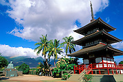 Afternoon light on the Buddist Shrine at the Jodo Mission, Lahaina, Maui, Hawaii