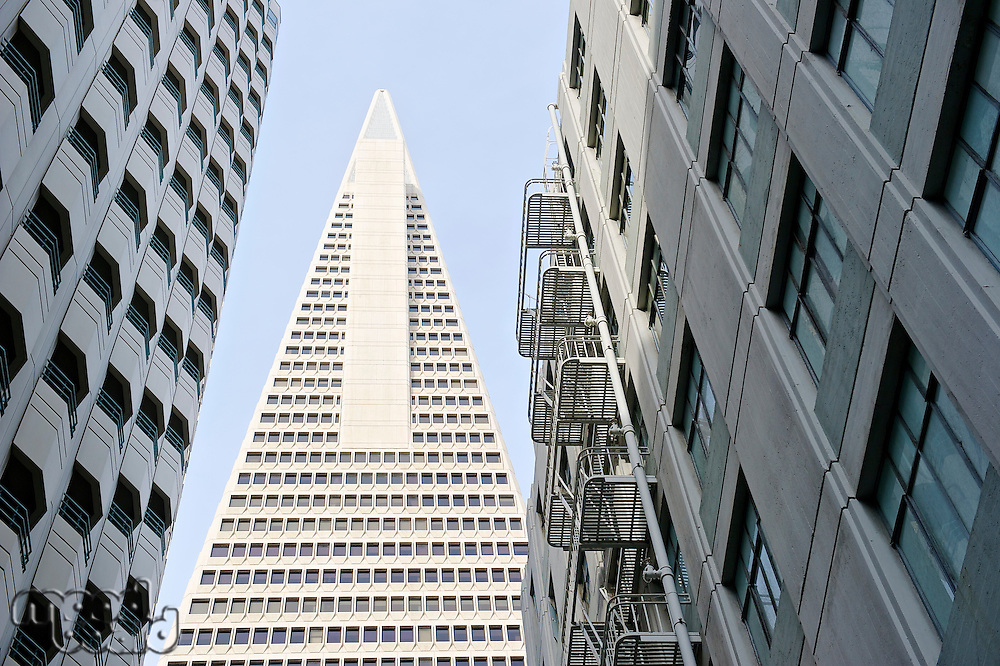 Low angle view of the Transamerica Pyramid San Francisco designed by William Pereira
