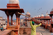 On a Friday afternoon, A boy playing with a bamboo stick at the Jama Masjid in Agra, Uttar Pradesh.