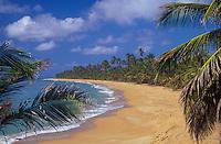 Maunabo beach