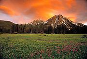 Sunset over McGown Peak shooting stars. Sawtooth Mtns. Idaho.