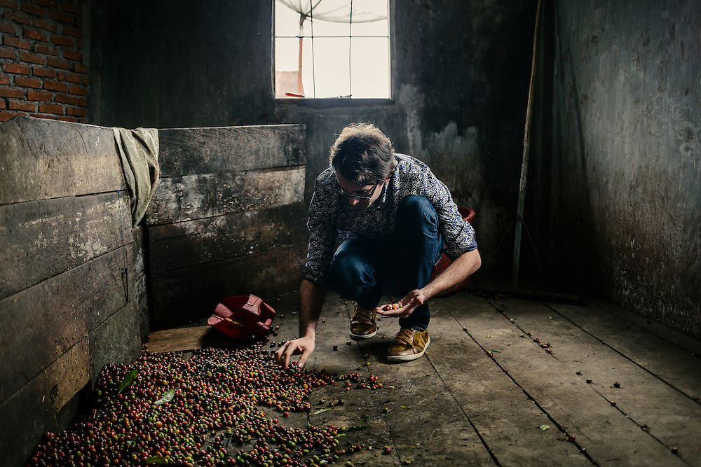 Antoine Netien, director of Coutume, examines coffee cherries at a collector's home.
