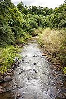 Rio Burro Branco. Sul Brasil, Santa Catarina, Brasil. / Burro Branco River. Sul Brasil, Santa Catarina, Brazil.