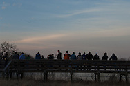 Platte River valley, Nebraska<br /> <br /> Crane watchers stand on viewing platform watching waterfowl and cranes fly overhead coming back to river at sunset.