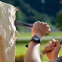 Sculture di legno Val di Ledro 2014