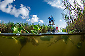 Marsh Madness_Venice, Louisiana