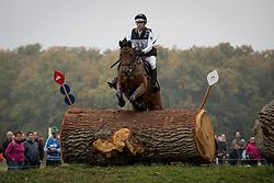 Schnaufer Josephine, GER, Vivian 47<br /> World Championship Young Eventing Horses<br /> Mondial du Lion - Le Lion d'Angers 2016<br /> © Hippo Foto - Dirk Caremans<br /> 22/10/2016