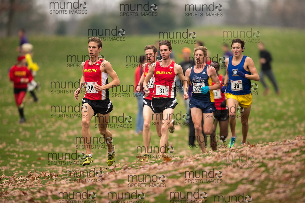 London, Ontario ---2012-11-10--- Aaron Hendrikx of the Guelph Gryphons competes at the 2012 CIS Cross Country Championships at Thames Valley Golf Course in London, Ontario, November 10, 2012. .GEOFF ROBINS Mundo Sport Images