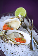 Copyright JIm Rice ©2013.Oysters.Styled and photographed by .Jim Rice