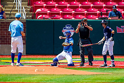25 May 2019:  Max Wright catches, Zach Frey pitches, Blayne Jones bats and Bill McGuire makes the calls.  Missouri Valley Conference Baseball Tournament - Dallas Baptist Patriots v Indiana State Sycamores at Duffy Bass Field in Normal IL<br /> <br /> #MVCSPORTS