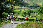 Seen descending into Wasdale valley, down to Wastwater lake and the hamlet of Wasdale Head, in Lake District National Park, Cumbria, England, United Kingdom, Europe. England Coast to Coast hike day 2 of 14: from Eskdale in Cumbria county, we walked to Boot for lunch at a local pub and a visit to a working medieval corn mill. We then climbed to Burnmoor Tarn, and descended to Wasdale Head. Via minibus we returned to Irton Hall for night 2 of 2. [This image, commissioned by Wilderness Travel, is not available to any other agency providing group travel in the UK, but may otherwise be licensable from Tom Dempsey – please inquire at PhotoSeek.com.]