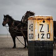 Op Ameland wordt de reddingsboot nog voor toeristen met paarden te water gelaten, Ameland, the Netherlands