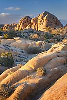 Jumbo Rocks Joshua Tree National Park California
