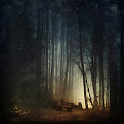 Crow sitting on the edge of a bench at dawn - surreal manipulated photograph<br /> Prints:<br /> https://society6.com/product/end-of-night-fantasy_print#1=45<br /> <br /> REDBUBBLE products: http://www.redbubble.com/people/dyrkwyst/works/21327492-end-of-night?ref=recent-owner