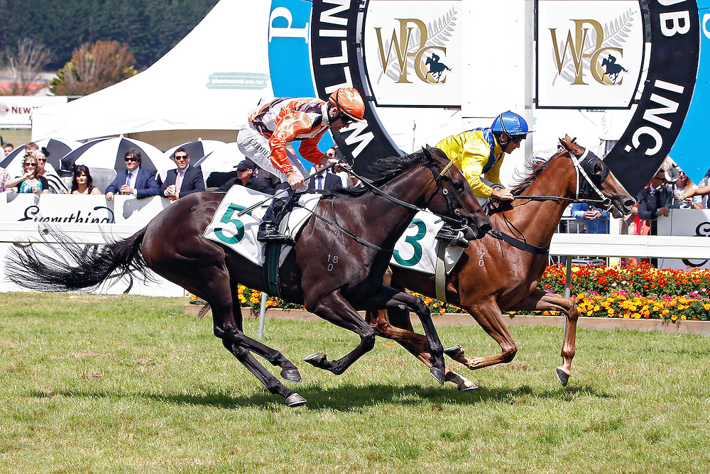 Moozoon ridden by Mark Sweeney, right and Miss Selby ridden by Jonathan Riddell, left, cross the line in the 1600m Group III Desert Gold Stakes at Trentham Racecourse, Wellington, New Zealand, Saturday, January 25, 2014. Credit: SNPA/Dean Pemberton