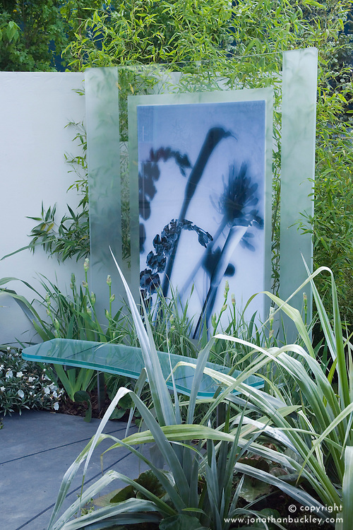 Glass bench backed by glass screen with photographic imagery. Astelia chathamica in the foreground. Room 105 Garden