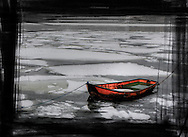 Red jolly among ice floes