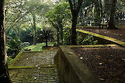 The Eastern Terraces - brick floor and Cycad.<br /> <br /> LUNUGANGA the country home and &amp; garden of Sri Lanka's most celebrated architect, Geoffrey Bawa...&quot;Lunuganga, Bentota, 1948-1997....The garden at Lunuganga sits astride two low hills on a promontory which juts out into a brackish lagoon lying off the estuary of the Bentota River.  In 1948, when Bawa first bought it, there was nothing here but an undistinguished bungalow surrounded by ten hectares of rubber plantation.  Since then hills have been moved, terraces have been cut, woods have been replanted and new vistas have been opened up, but the original bungalow still survives within its cocoon of added verandas, courtyards, and loggias.&quot; from geoffreybawa.com