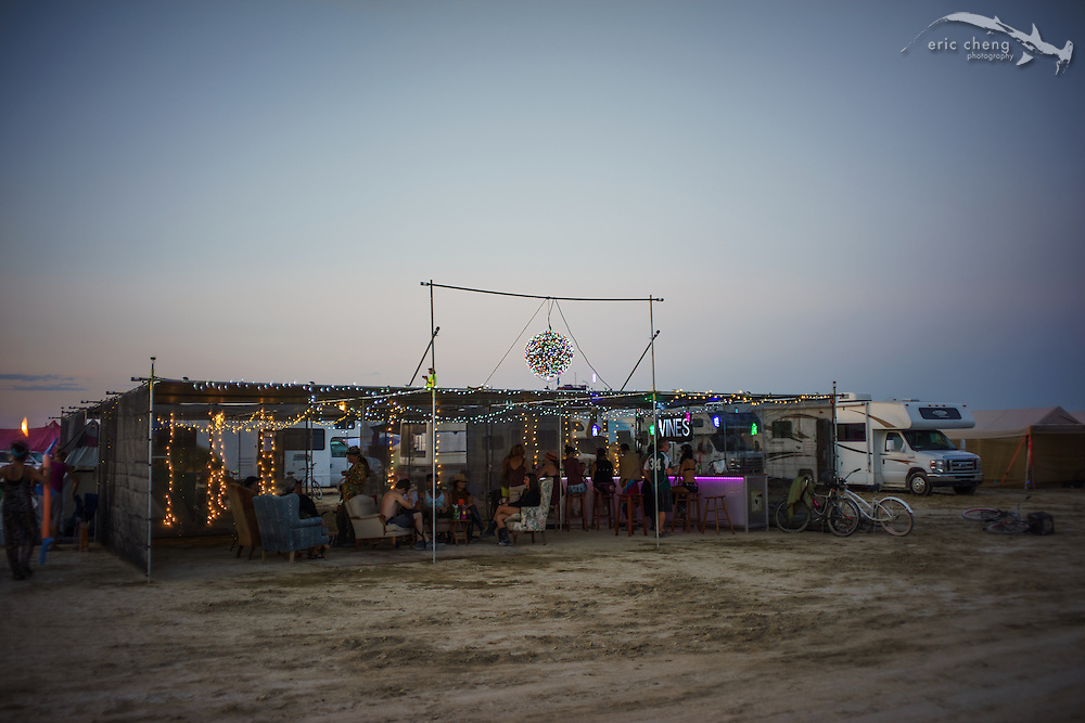 Vines Without Borders. Burning Man 2014
