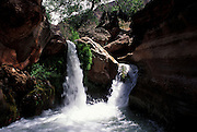 Waterfall, Deer Creek, river mile 136, Grand Canyon National Park, Arizona..Subject photograph(s) are copyright Edward McCain. All rights are reserved except those specifically granted by Edward McCain in writing prior to publication...McCain Photography.211 S 4th Avenue.Tucson, AZ 85701-2103.(520) 623-1998.mobile: (520) 990-0999.fax: (520) 623-1190.http://www.mccainphoto.com.edward@mccainphoto.com.