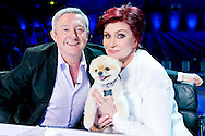 RESEND HI RES<br /> <br /> The X Factor Judges were joined by a very special guest star during the Boot Camp auditions yesterday - Sharon Osbourne's adorable dog Bella.<br /> <br /> The four legged friend spent the day at Wembley arena, watching Sharon's Overs' category audition. Dubbed 'the fifth judge' by Sharon, she joked that she had brought the pooch along to help her make the all important decisions on which acts to put through to her judges houses category. <br /> <br /> An insider said 'For once all the attention wasn't on the judges - Sharon's little dog Bella kept everyone entertained during the breaks and kept morale high on a very long day of Bootcamp.'&copy; THAMES TV<br /> <br /> Tom Dymond <br /> <br /> info@tomdymond.co.uk<br />  00447825740400&copy; Tom Dymond<br /> <br /> Tom Dymond <br /> <br /> info@tomdymond.co.uk<br />  00447825740400