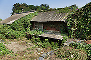 Aoshima, Ehime prefecture, September 4 2015 - Abandonned houses in Aoshima island. Due to Japan demographic problem and rural exodus, the population decreased from 800 residents in the 1960ies to 15 in 2015.<br /> Aoshima (Ao island) is one of the several « cat islands » in Japan. Due to the decreasing of its poluation, the island now host about 6 times more cats than residents.