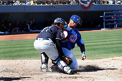 March 18, 2018 - Las Vegas, NV, U.S. - LAS VEGAS, NV - MARCH 18: Eric Haase (71) of the Indians tags out Charcer Burks (54) of the Cubs on a play at the plate during a game between the Chicago Cubs and Cleveland Indians as part of Big League Weekend on March 18, 2018 at Cashman Field in Las Vegas, Nevada. (Photo by Jeff Speer/Icon Sportswire) (Credit Image: © Jeff Speer/Icon SMI via ZUMA Press)