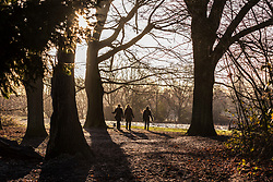 © Licensed to London News Pictures. 18/01/2018. London, UK. Three dog walkers on a crisp frosty morning on Hampstead Heath. Photo credit: Rob Pinney/LNP
