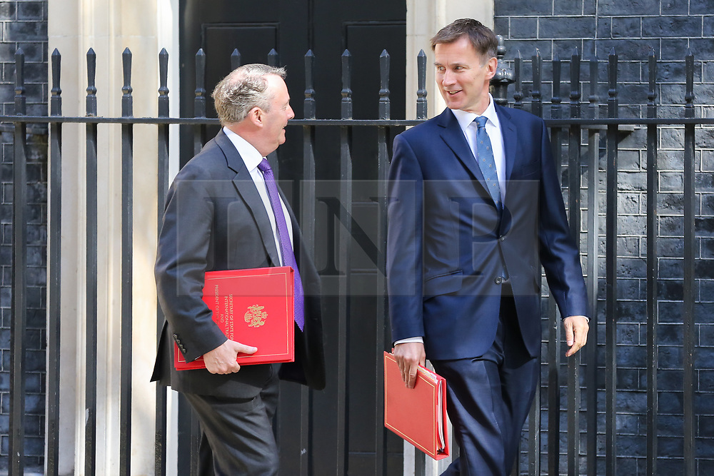 © Licensed to London News Pictures. 14/05/2019. London, UK. Liam Fox - Secretary of State for International Trade and President of the Board of Trade (L) and Jeremy Hunt - Foreign Secretary (R) arrives in Downing Street for the weekly Cabinet meeting. Photo credit: Dinendra Haria/LNP