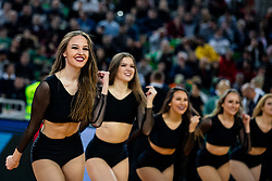 Green Ladies dance team during ABA basketball league round 9 match between teams KK Cedevita Olimpija and KK Crvena Zvezda MTS in Arena Stozice, 1. December, 2019, Ljubljana, Slovenia. Photo by Grega Valancic / Sportida