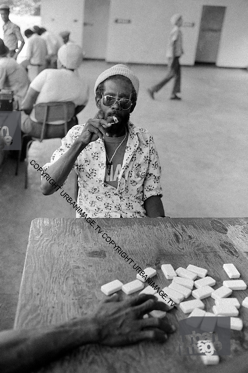 Domino Game - Kingston Jamaica