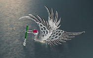 ruby, diamond and jade adorn a flying Crane brooch made of platinum designed by Anna Hu