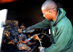 Cape Town-180829 Street vendor burn off the remaining hair with gas flame before thoroughly scrubbed and rinsed well to remove all hairs. The Sheep head also know as Smiley is very popular in the township it used to be cooked only if threr was traditional cremony nowadays there are many places that clean and sell this delicacy,cooked or uncooked  Pictures Ayanda Ndamane/African/news/agency ANA