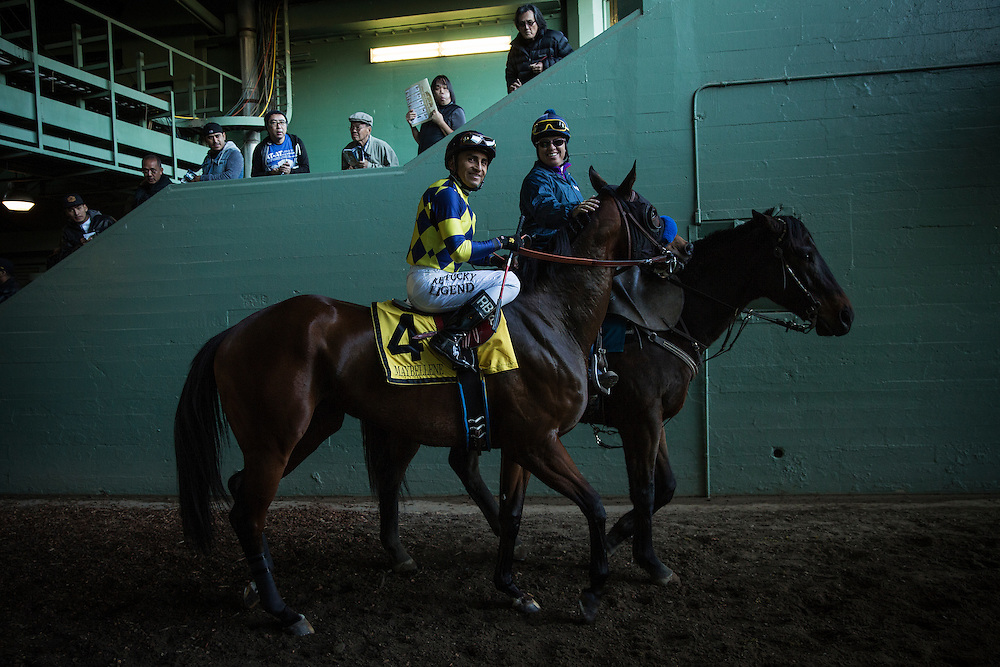 December 26, 2015:Maebeline with Rafael Bejarano up at the La Brea Stakes at Santa Anita Park, Arcadia CA. Evers/ESW/CSM