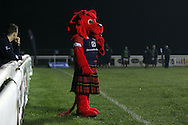 The London Scottish mascot looks on during the British &amp; Irish Cup match between London Scottish &amp; Connacht Eagles at Richmond, Greater London on Friday 29th November 2014<br /> <br /> Photo: Ken Sparks | UK Sports Pics Ltd<br /> London Scottish v Connacht Eagles, British &amp; Irish Cup,29th November 2014<br /> <br /> &copy; UK Sports Pics Ltd. FA Accredited. Football League Licence No:  FL14/15/P5700.Football Conference Licence No: PCONF 051/14 Tel +44(0)7968 045353. email ken@uksportspics.co.uk, 7 Leslie Park Road, East Croydon, Surrey CR0 6TN. Credit UK Sports Pics Ltd