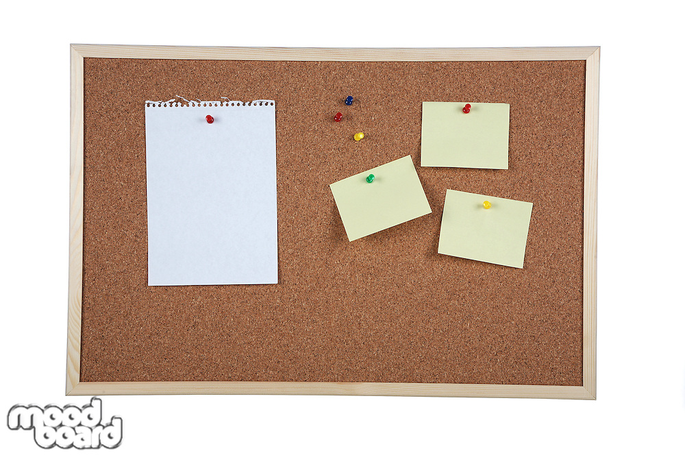 Cork board on white background