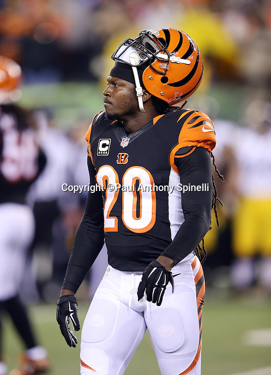 Cincinnati Bengals free safety Reggie Nelson (20) looks on during the NFL AFC Wild Card playoff football game against the Pittsburgh Steelers on Saturday, Jan. 9, 2016 in Cincinnati. The Steelers won the game 18-16. (©Paul Anthony Spinelli)