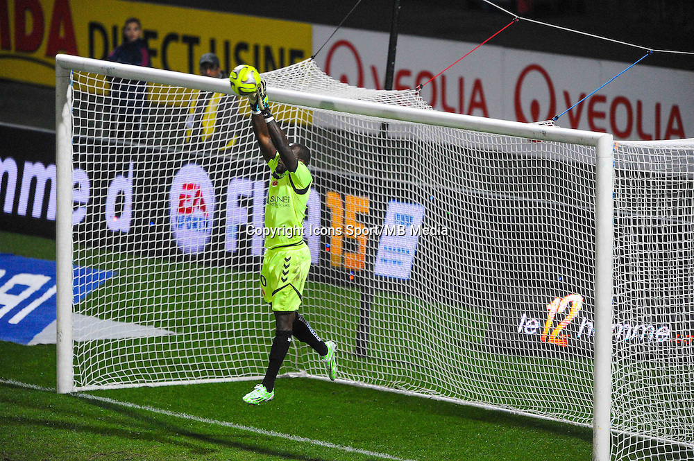 Johny PLACIDE  - 04.12.2014 - Lyon / Reims - 16eme journee de Ligue 1  <br /> Photo : Jean Paul Thomas / Icon Sport