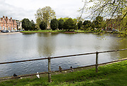Pond known as the Crammer, on the Green in Devizes, Wiltshire, England, UK possible site of Moonrakers legend