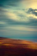 Lone walker on the beach of Barnville-Plage, Barnville-Carteret, Normandie, Frankreich