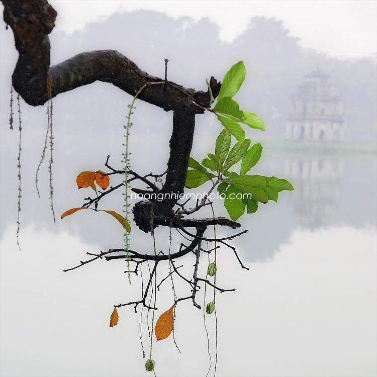 Vietnam Images-landscape-ha noi phong cảnh việt nam