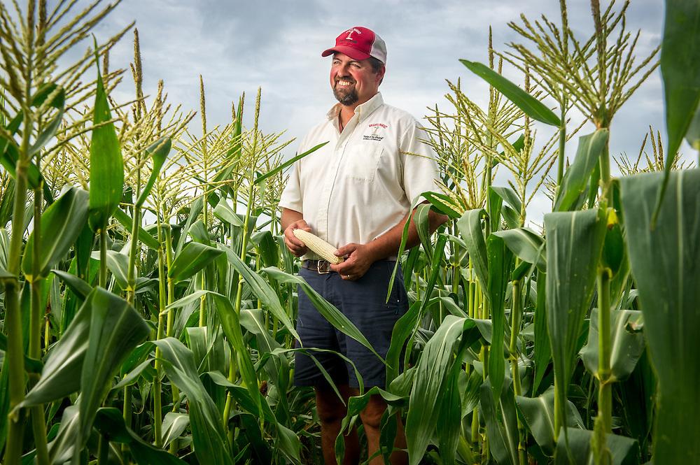 Farmer posing in a field of corn in Maryland