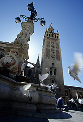 Europe, Spain, Andalucia, Sevilla, Cathedral and fountain in plaza with doves in flight.