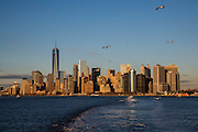 Seagulls fly in the sky across the famous skyscraper skyline of Lower Manhattan and East River at dusk, photographed from Staten Island Ferry, New York, United States of America. <br /> (photo by Andrew Aitchison / In pictures via Getty Images)