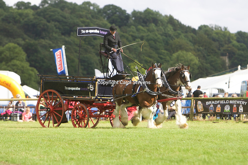 Gawin Holmes driving his own Clydesdales, Sorbie and Jake<br />