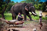 13th August 2014, Yamuna River, New Delhi, India. An elephant handler yawns in the early morning as he guards an elephant near a bridge over the Yamuna River, New Delhi, India on the 13th August 2014<br /> <br /> Elephant handlers (Mahouts) eke out a living in makeshift camps on the banks of the Yamuna River in New Delhi. They survive on a small retainer paid by the elephant owners and by giving rides to passers by. The owners keep all the money from hiring the animals out for religious festivals, events and weddings, they also are involved in the illegal trade of captive elephants. The living conditions and treatment of elephants kept in cities in North India is extremely harsh, the handlers use the banned 'ankush' or bullhook to control the animals through daily beatings, the animals have no proper shelters are forced to walk on burning hot tarmac and stand for hours with their feet chained together. <br /> <br /> PHOTOGRAPH BY AND COPYRIGHT OF SIMON DE TREY-WHITE<br /> + 91 98103 99809<br /> email: simon@simondetreywhite.com photographer in delhi