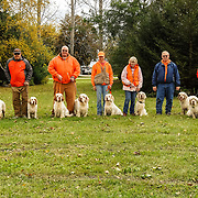 The 2017 Clumber Spaniel Club of America event took place at Rock River Kennels, in Beaver Dam, WI. Photography was made October 15, 2017.  The weather was hazy and damp with diffuse light in the morning, the sun came out late morning.  A great day for working dogs!