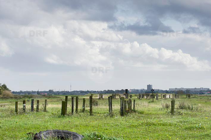 Nederland Delft 17-09-2010 20100917     A4 Delft - Schiedam wordt definitief verlengd,  er  is begin deze maand officieel besloten tot de aanleg van het stuk snelweg waarover zo'n vijftig jaar is gesproken. Natuurgebied dat in de toekomst zal moeten wijken na het doortrekken van de A4. Rijkswaterstaat en het ministerie van VWS hebben dat laten weten.Over de nieuwe verkeersader wordt al decennialang gesteggeld, vooral omdat de weg het natuurgebied Midden-Delfland doorboort...De zeven kilometer asfalt tussen Delft en Schiedam doorkruist straks verdiept of via een tunnel het natuurgebied tussen de twee steden. Het belangrijkste pluspunt is dat de A13 wordt ontlast. Op rijksweg A13 staat dagelijks de voor de economie schadelijkste file van Nederland. Met het project A4 Delft-Schiedam willen lokale en regionale overheden en het Rijk de problemen rond bereikbaarheid en leefbaarheid op en rond de A13 en de A4 Delft-Schiedam oplossen. Midden Delftland.